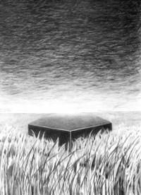 Anna M. Scholz: Fremdkörper (Bleistiftzeichnung)